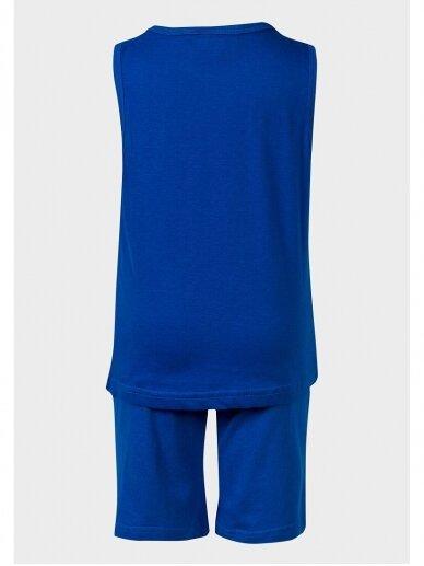 Minions vasariškas mėlynas kostiumėlis Pakalikai 1006D187 2