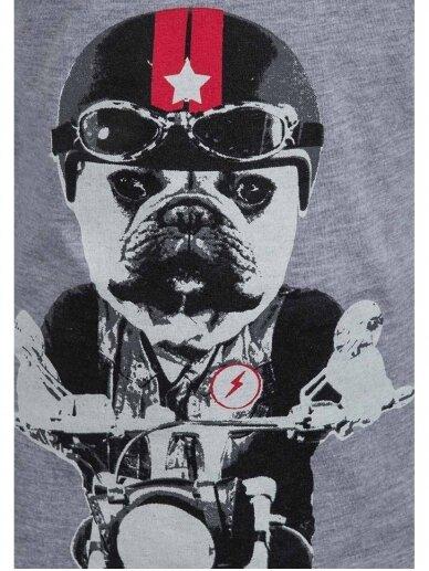 Pilkai marškinėliai ilgomis rankovėmis Šuo baikeris 0801D164 2