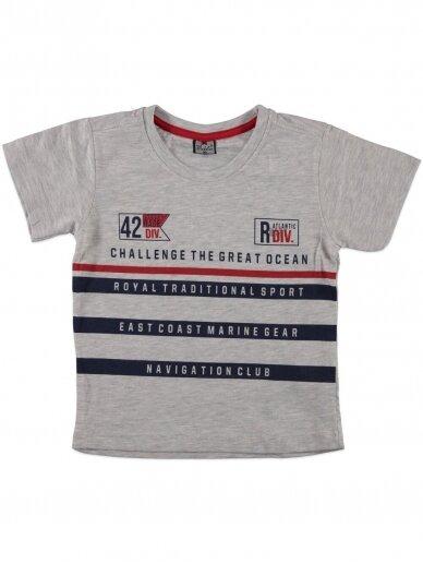 Pilkos spalvos marškinėliai 0051D12