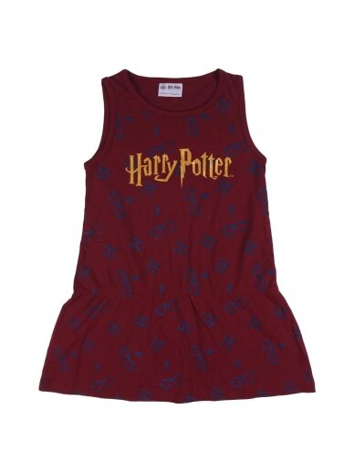 Vaikiška suknelė Harry Potter 1223D081 4